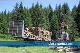Σ. Φάμελλος: «Ενεργοποιούμε την παραγωγική μηχανή του δάσους και του φυσικούπεριβάλλοντος»