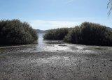 Φυσιολογική η απώλεια νερού στη λίμνηΚαστοριάς