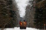 «Όχι» στην υλοτόμηση του δάσουςΜπιαλοβιέζα