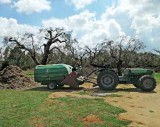 Ενέργεια από κλαδέματα και αγροτική βιομάζα – Αναξιοποίητοι πάνωαπό 3 εκ. τόνοι τοχρόνο